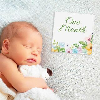 Milestone Cards - Green Floral